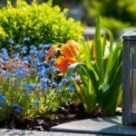 Какие цветы приносить на кладбище и что можно сажать на могилу?