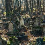 История возникновения надгробий — когда впервые появились могилы и что они значили?