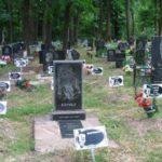 Кладбища для домашних животных — правила захоронения